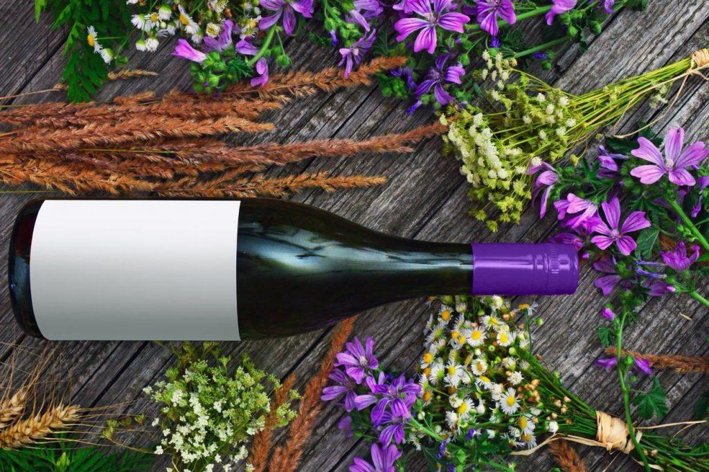 regala gourmet vinos y cavas