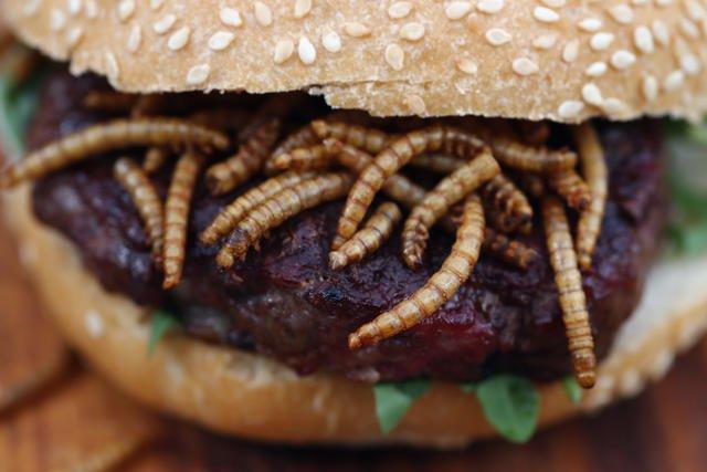 Hamburguesa de gusanos